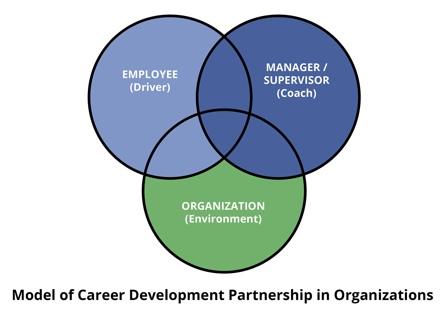 Model of Career Development Partnership in Organizations